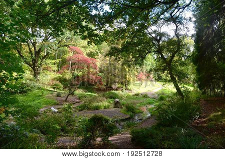 The Japanese garden at Dalzell Estate, Motherwell