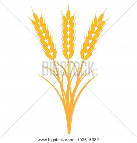 bouquet bunch of ears of wheat with the stems and leaves of ripe yellow color, a vector the concept of the harvest of crops, a sheaf of ripe wheat barley or rye