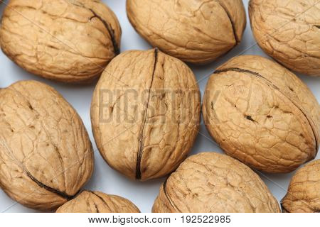 Whole walnut as background. Healthy food. Walnut.