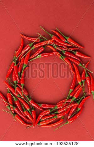 red hot chili peppers, popular spices concept - red hot chili peppers pods in beautiful circle composition of a colorful area on red background, top view, flat lay, free space for text, vertical
