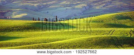 Tuscany, evening sun, summer green hills rise
