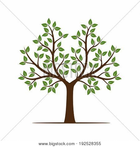 Summer Tree. Vector Illustration and graphic element.