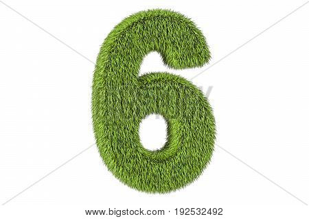number 6 from grass 3D rendering isolated on white background