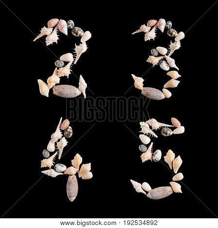 various sea shells capital numbers 2 3 4 5 on isolated black background with clipping path.