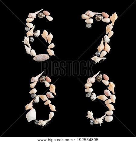 various sea shells capital numbers 6 7 8 9 on isolated black background with clipping path.