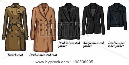 Vector illustration of womens jackets types set. Trench coat classic double breasted wool cashmere coat double and single breasted suit business jacket double sided rider jacket.