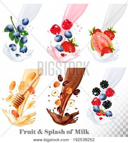 Set of different milk splashes with fruit nuts and berries. Vector.