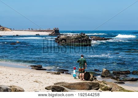 LA JOLLA, CALIFORNIA - JUNE 16, 2017:  A man and a child enjoying themselves on a beach near the Children's Pool with visitors on the sea wall and a rock formation with Cormorants in the background.