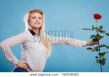 Woman holding red rose. Lovely blonde smiling girl with flower studio shot on blue. Romance holidays valentine day concept