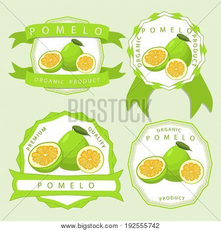 Abstract vector illustration logo whole ripe fruit pomelo, green leaf, cut half grapefruit sliced.