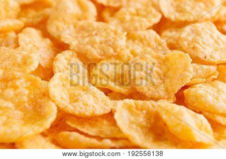 Corn flakes closeup background. Cereals texture .
