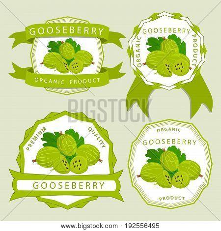 Vector illustration logo for whole ripe fruit gooseberry with green stem leaf, cut half, background.