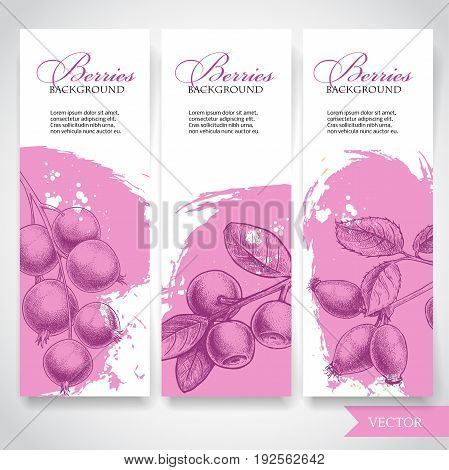 Farm fresh berries banners. Hand drawn branches with berries. Blueberry black currant and rose hip on rough pink watercolor paint background with white splashes. Vector berries illustration.