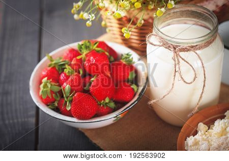 Ripe fresh strawberries milk in a jug and homemade cottage cheese on the kitchen table. Still life from farm products.