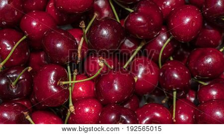 cherry detail macro of delicious fresh ripe red cherries with bright green stem, perfect food background Sweet cherry background. Cherry from Bolea Aragon Huesca Spain