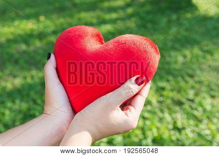 Red soft heart small pillow shape in woman hands for Valentines day concept over green grass background with warm sunlight selective focus