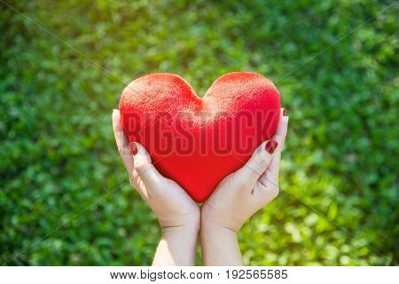 Red soft heart small pillow shape in asian female hands for Valentines day concept on green grass background with soft yellow sunlight selective focus