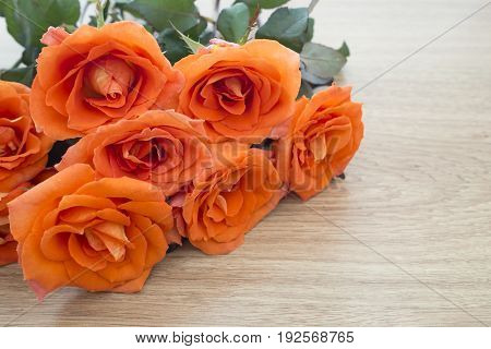 Fresh orange roses on wooden background with copy space for some text Concept of love Valentines Day background wedding day