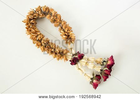 Fungus on brown dry garland with roses crown flower and jasmine.