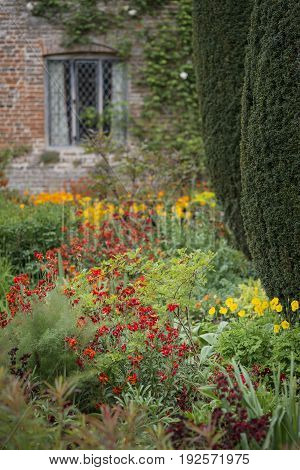 Stunning Shallow Depth Of Field Landscape Image Of English Country Garden Borders With Vibrant Tulip