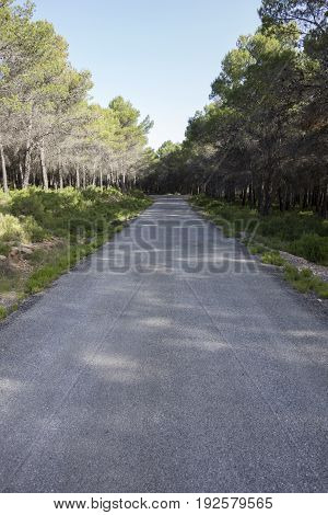 Around The Village Of Pina De Montalgrao In Castellon