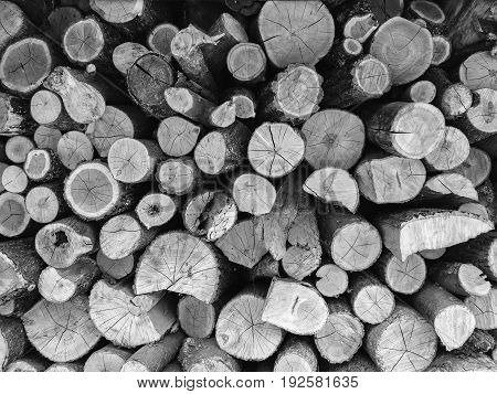 Natural wooden texture black and white background closeup of round logs firewood. Firewood stacked and prepared stack of natural material design.