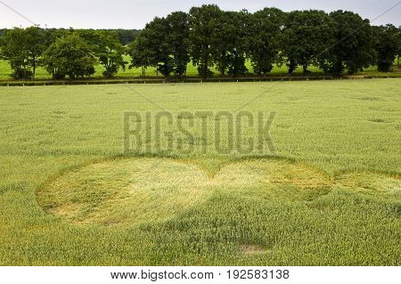 Mysterious crop circle in a wheat field near the city of Lochem in the Netherlands