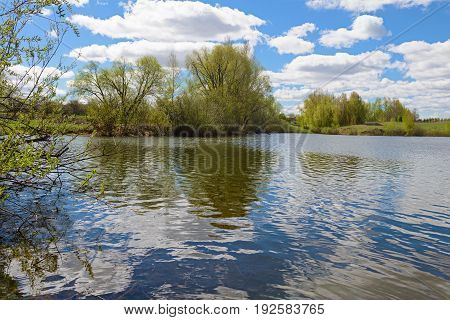 Spring pond with trees and clouds reflected on the water surface