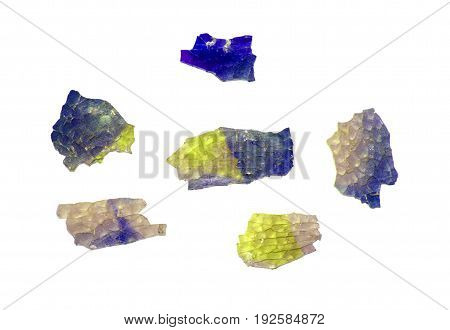 Shards Of Colored Glass Isolated