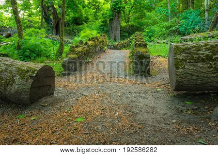 A pathway over a bridge between two logs at Barna Woods Co. Galway.