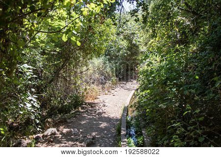 Path passing through a wooded next to a small water channel and descending to the Amud River