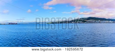 Panoramic image of Wellington habour capital of New Zealand North Island of New Zealand