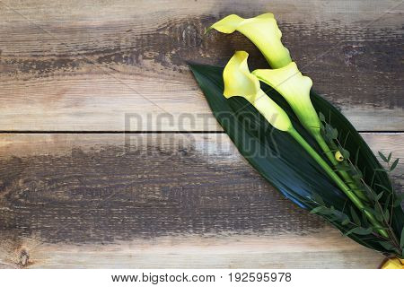 Bouquet of beautiful yellow calla lilies on wooden table