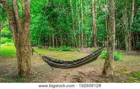 Cradle bamboo decorated in garden, stock photo