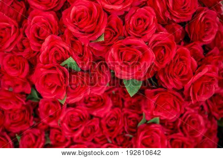 Big beautiful bouquet of red roses. Texture roses colors. A roses gift for a wedding birthday Valentine's Day. Roses background. Roses texture