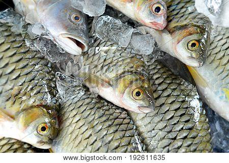 Roadside Fish Market In Lao