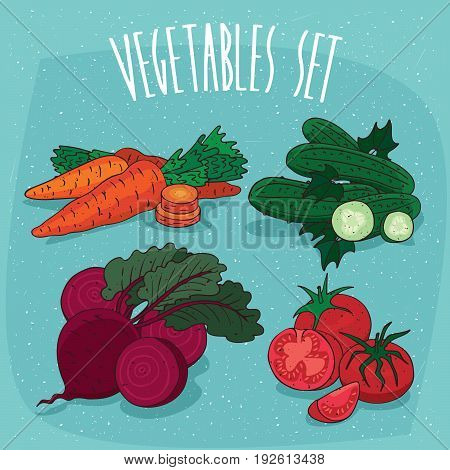 Set Isolated Vegetables With Sections And Slices