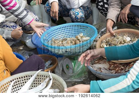 Women selling fish and shrimps at the outskirts of Da Nang, Vietnam