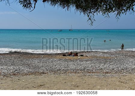Sea View Under A Tree