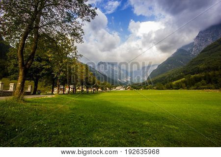 Small mountain village with beautiful tree alley and alpine meadow during sunny day, Slovenia