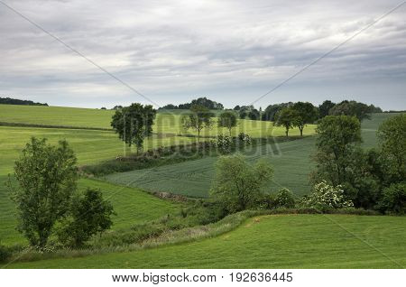 Landscape near Wijlre in the Dutch most hilly province Limburg
