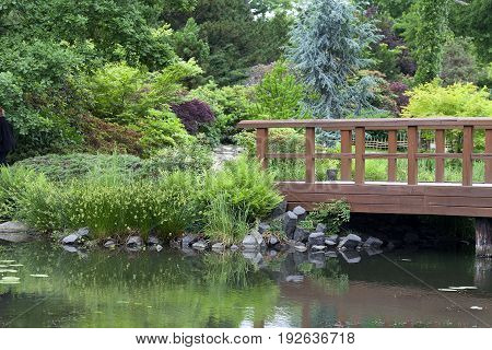 Japanese Garden exotic plants Wroclaw Poland. The Japanese Garden was founded in 1909-1913