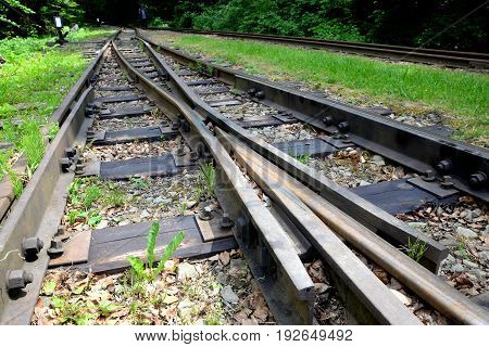 Narrow gauge railway Bieszczady forest track and attractions
