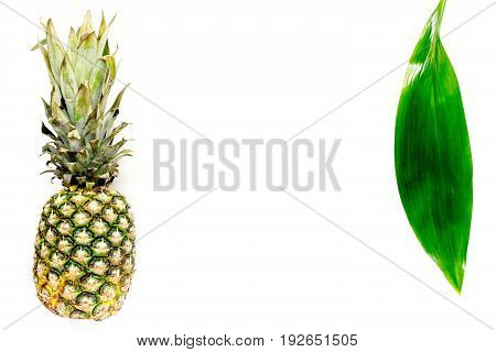 Pineapple and leaves on white background top view.