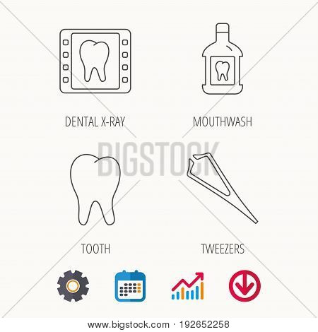 Mouthwash, tooth and dental x-ray icons. Tweezers linear sign. Calendar, Graph chart and Cogwheel signs. Download colored web icon. Vector