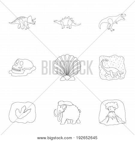 Ancient extinct animals and their tracks and remains. Dinosaurs, tyrannosaurs, pnictosaurs.Dinisaurs and prehistorical icon in set collection on outline style vector symbol stock web illustration.