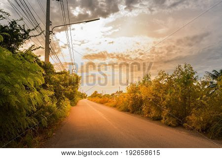 Comfortable journey of beautiful landscape street and trees beside with blue sky and clouds on sunlight.