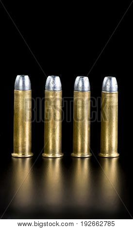 Brass and lead bullets with room for your type.