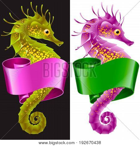 Vector Thorny Seahorse is Wrapped in Swirl Ribbon. Set of Hippocampus and Banner Frame Isolated on Background. Colorful Horse Fish Icon for Beach Party Sea Vacation Tourism Diving Restaurants