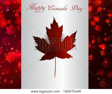 Happy Canada Day background magic maple leaves rain in flag with maple leaf vector